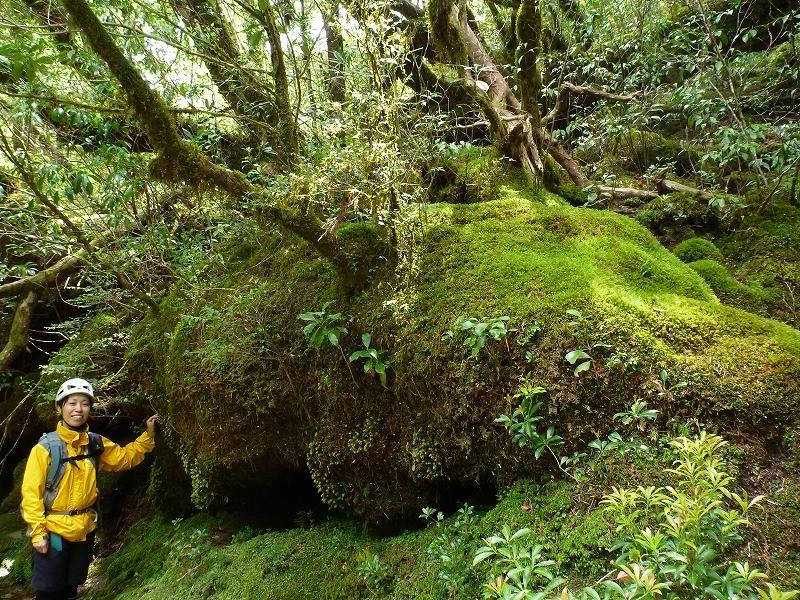 荒川 山上庭園 (1)